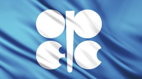 opec-logo-on-flag-575